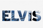 elvis-communications logo