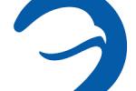 beluga-it logo