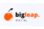 big-leap-digital logo
