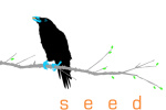 seed-media-arts logo