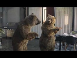 Canvas Bears, Party Ready
