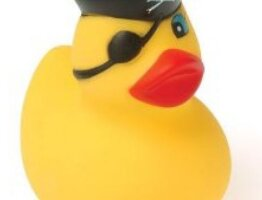 Ask the rubber duck - test