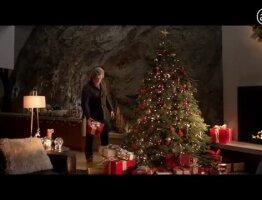 Tree feat. Jeff Bridges