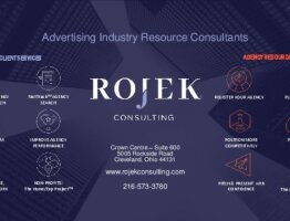 Overview of ROJEK Consulting Services