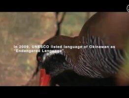 Language Sanctuary