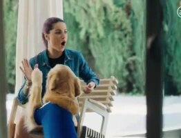 Allianz Support Dog Squad