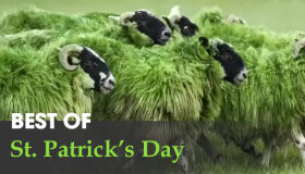 Best St. Patrick's Day Ads 2015