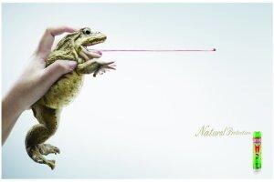 2011 Creative Standards International - Grand Prix - Poster