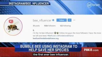 Bee_Influencer