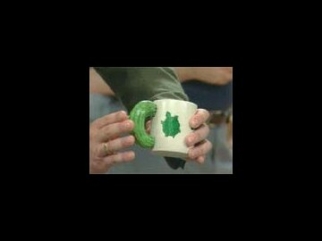 Roadshow Turtle Coffee Mug