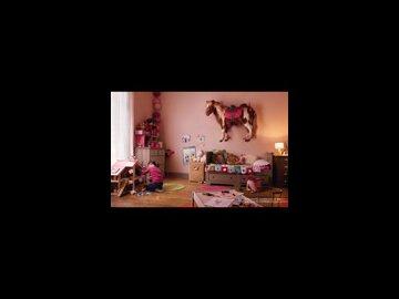 Pony (French)