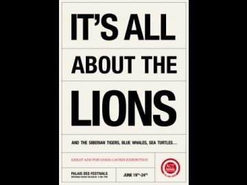 About the Lions