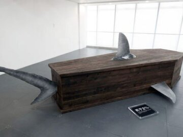 Wooden shark coffins 2
