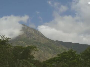 Dr Julian Bayliss: The Lost Forest of Mount Mabu