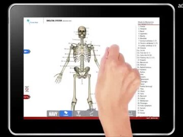 Anatomy Study Guide App