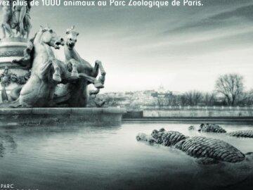"Paris becomes wild again ""Opéra"""