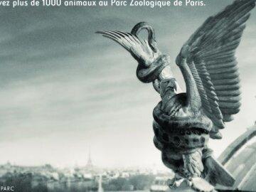 "Paris redevient sauvage ""Observatory"""
