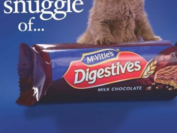 McVities Chocolate Digestives