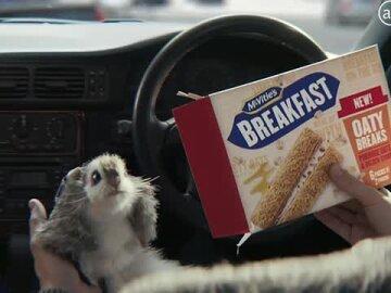 Breakfast Oaty Breaks