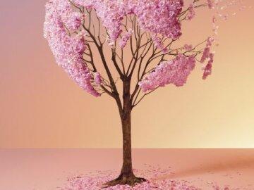 BNPP Cerisier
