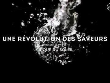 Revolution in flavour