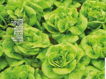 ARRP: Raconter des salades