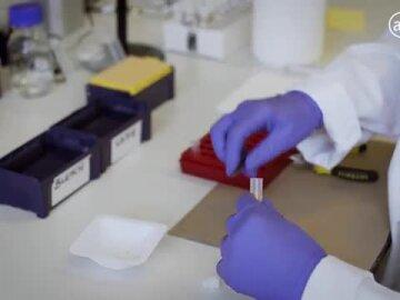 Marmite Gene Project