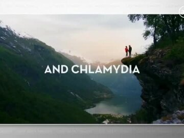 The Land of Chlamydia