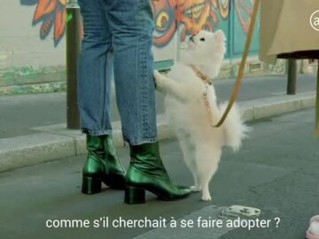 Boots 2 (French)