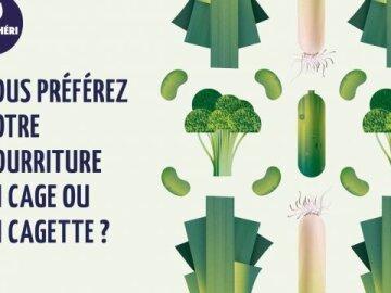 Légumes Verts Twitter