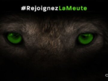 Campagne TV Coyote #RejoingnezLaMeute - Coyote - agence Les Gros Mots