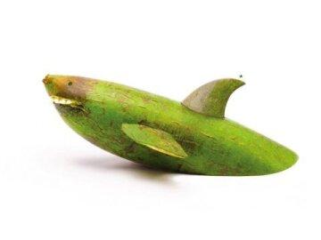 Cucumber Shark