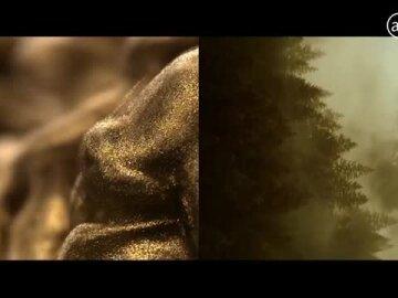 Royal Oak Yellow Gold I Audemars Piguet