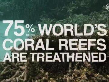 Keep Living Coral
