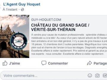 Château à vendre Facebook