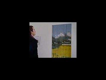 Curtain/Door