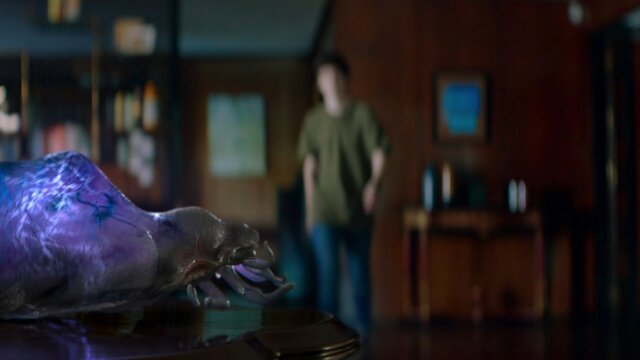 My Life is Yours: Havas Madrid for Sonae Sierra