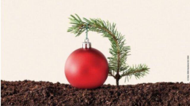 Early Christmas Sale 1