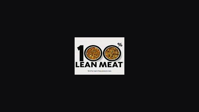 100% Lean