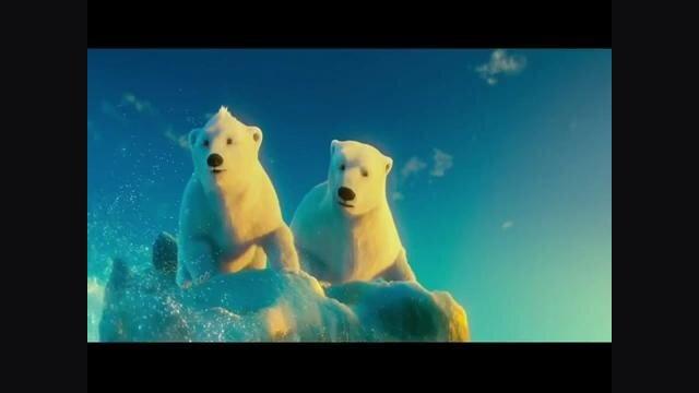 Bears Film 2013