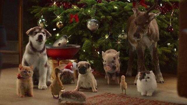 McVitie's Victoria Christmas Choir