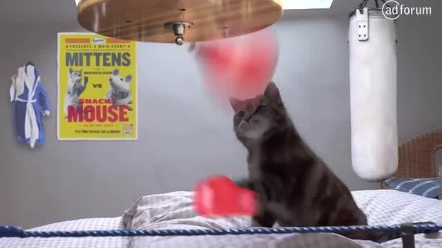Snacky Mouse (:30)