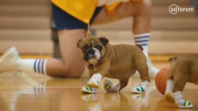 PEDIGREE® PUP-LETES- Tiny Sneakers