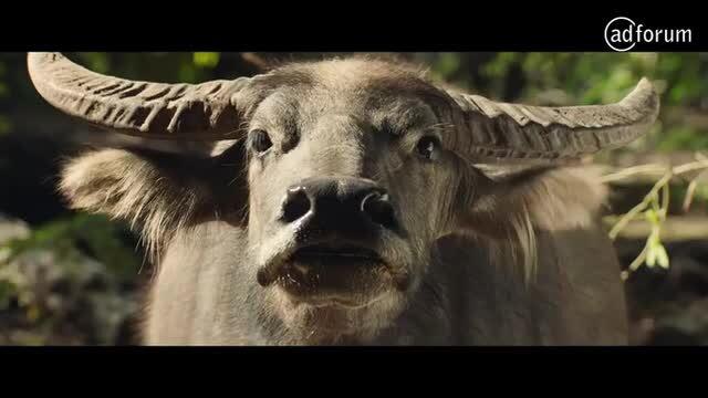 DUNDEE (2018) - Water Buffalo